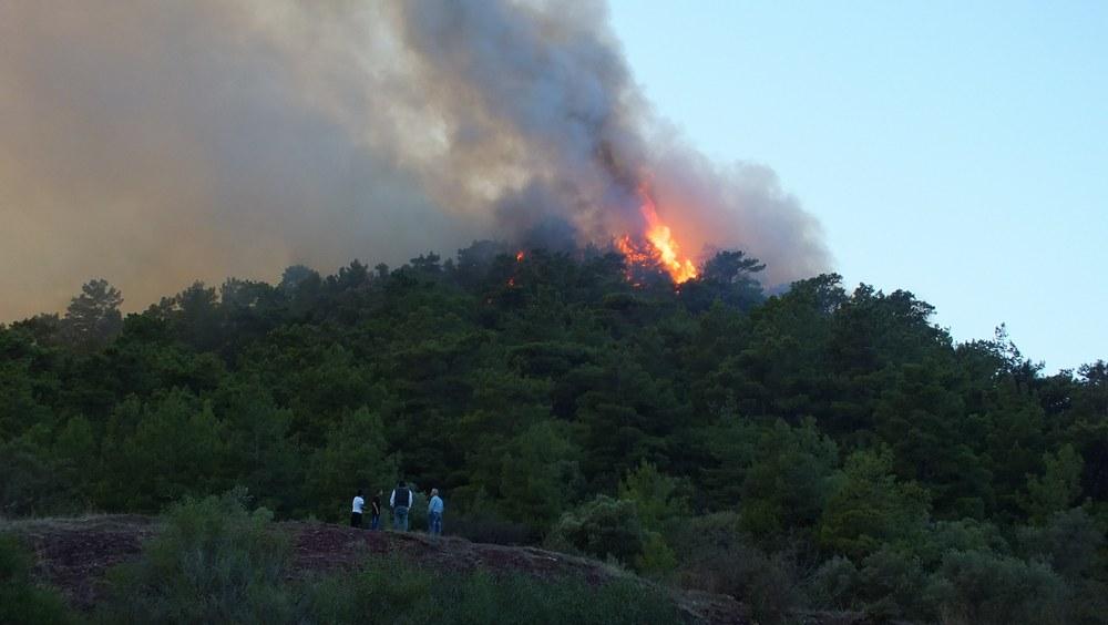 Marmaris Orman Yangını galerisi resim 1