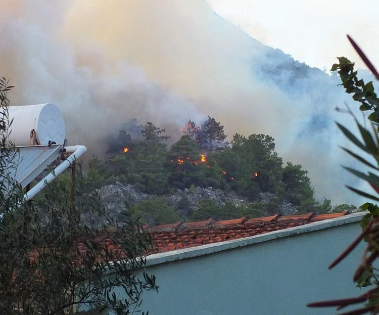 Marmaris Orman Yangını galerisi resim 4