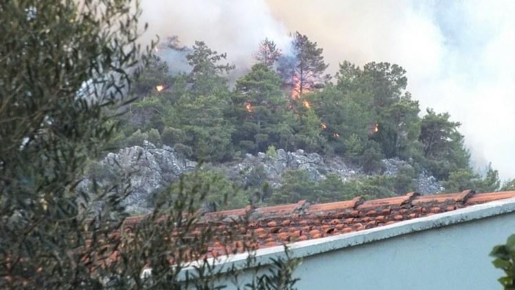Marmaris Orman Yangını galerisi resim 5