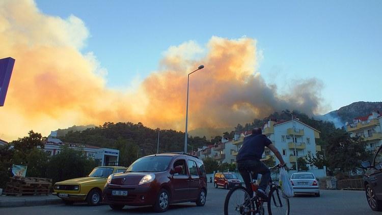 Marmaris Orman Yangını galerisi resim 7