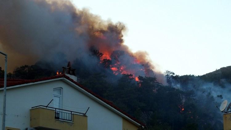Marmaris Orman Yangını galerisi resim 8