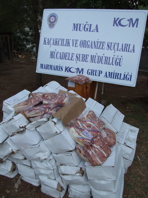 3 ton kaçak domuz eti