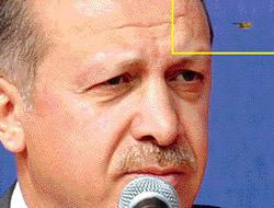 Erdoğanın alnına arı kondu