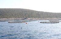 Balıkçılara taşınma kredisi