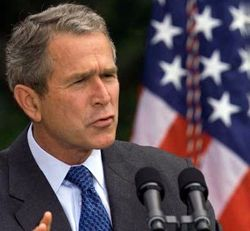Bush,ekranlardan veda etti.