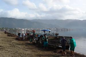 Fırtına sonrası sahil temizliği