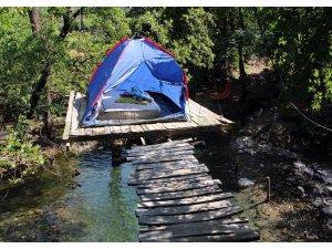 Ağaç dalında kamp çadırına ilgi