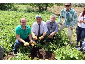 Muğlada yerel tohum merkezi çalışmaları sürüyor