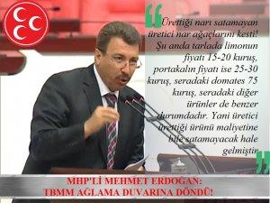 MHP'Lİ MEHMET ERDOĞAN: TBMM AĞLAMA DUVARINA DÖNDÜ!