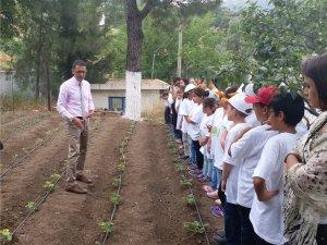 Lider Çocuk Tarım Kampı öğrencileri Marmariste...