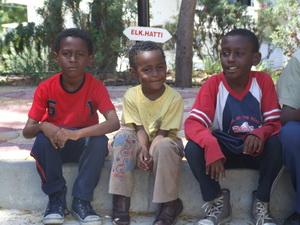 Datça'da 61 mülteci yakalandı