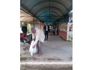 Ortaca Belediyesi Sokak Hayvanlarına Mama Dağıttı