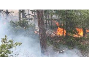 Marmaris'in Söğüt Köyünde Orman Yangıni Kontrol Altında