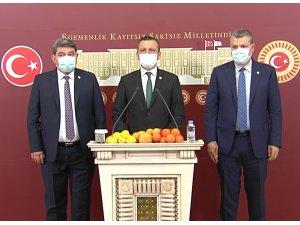 CHP'li Erbay: Gelecek yıllarda narenciyeye hasret kalabiliriz