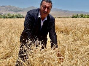 """Gürer: """"TMO, sözleşmesi feshedilen firmaya, 44 milyon lira ödemiş"""""""