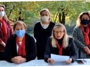 CHPKadın Kolları: ''Kadına yönelik şiddet politiktir''