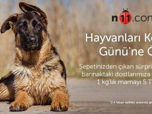n11.com'dan 4 Nisan Dünya Sokak Hayvanları Günü'ne Özel Kampanya!