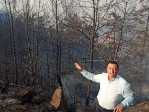 CHP Muğla Milletvekili Mürsel Alban, Sizin İtibarınız İşte Bu Kadar