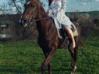 At Binmek Rahatlatıyor