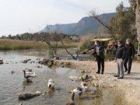 Vali Orhan Tavlı Akyaka'da Bulunan Azmak Nehrinde İncelemelerde Bulundu