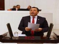 """CHP'li Alban: """"Turizmcinin Kanını Emiyorlar"""""""
