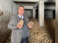 TMO patates ve soğan alımı yapacak