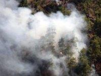 Muğla'daki orman yangınlarında 'sabotaj' şüphesi! Soruşturma başlatıldı
