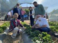 Yatağan'a 350 milyon liralık dev tarımsal yatırım