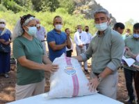 Marmaris Belediyesinden Köylüye Fıstık Dağıtımı