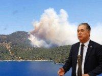 CHP'li Özcan: Ormanlarımız Ranta Kurban Ediliyor