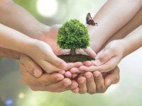 Gündelik Hayatta Çevreyi Korumak İçin Yapabileceğiniz 7 Şey