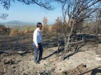 CHP'Lİ ÖZCAN'DAN TARIM VE ORMAN BAKANINA  ORMAN YANGINLARI İLE İLGİLİ  41 SORU